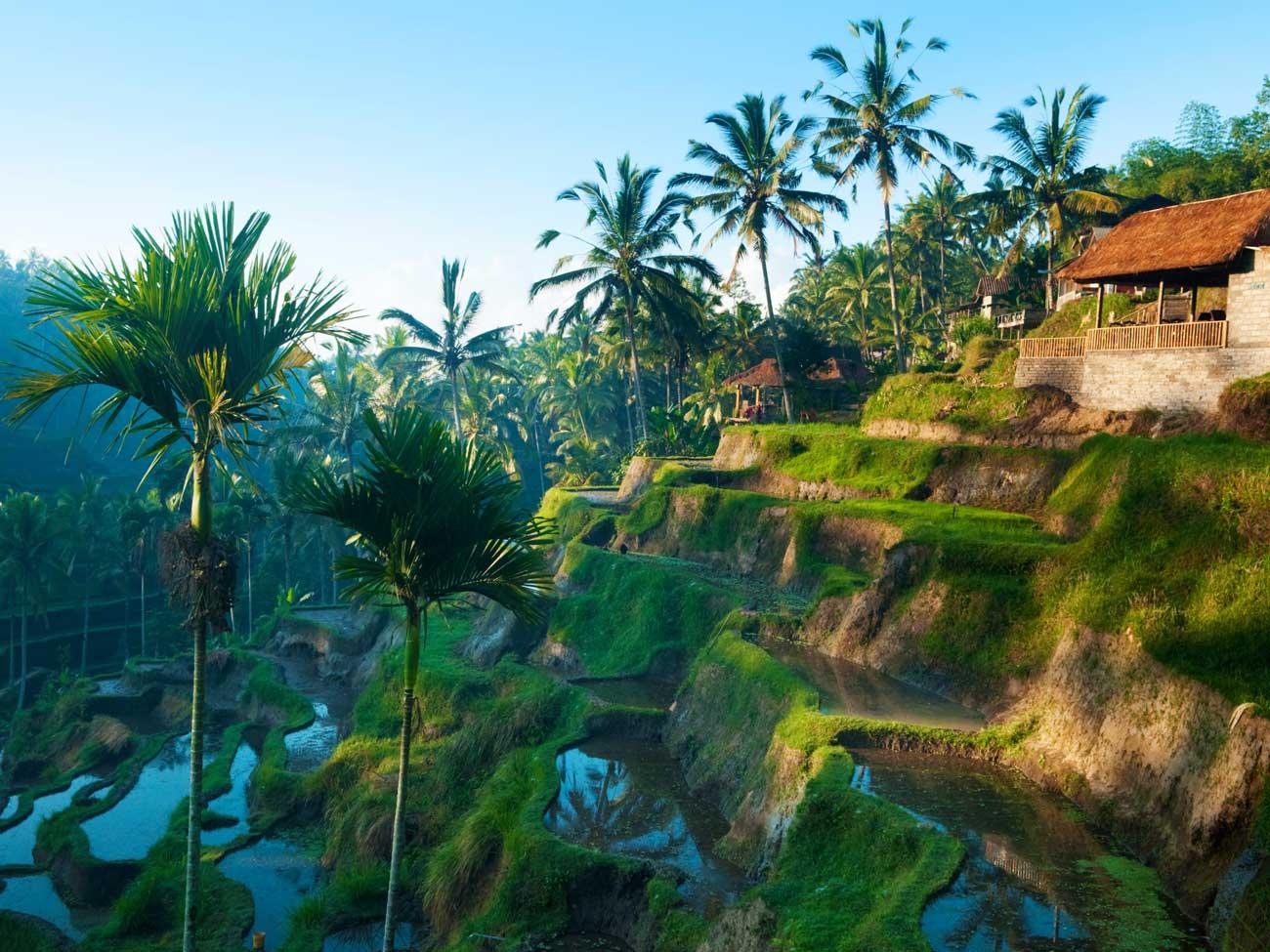 Poznávací zájezd na Bali