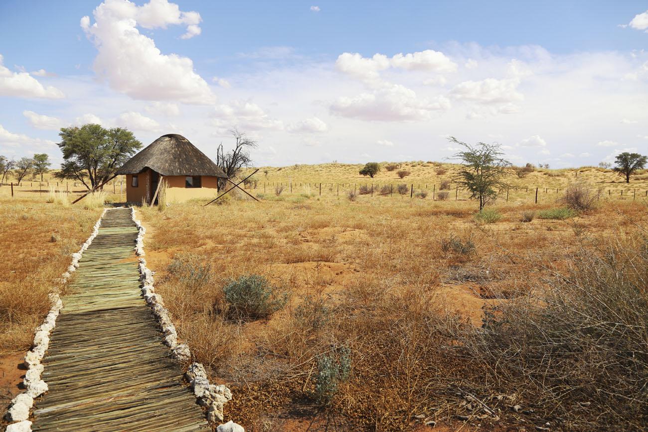 Safari Jihoafrická republika